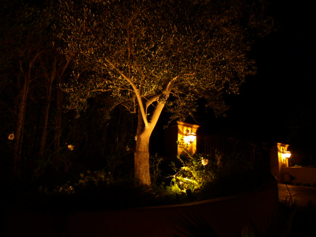 Newbury Park Hills Exterior Lighting